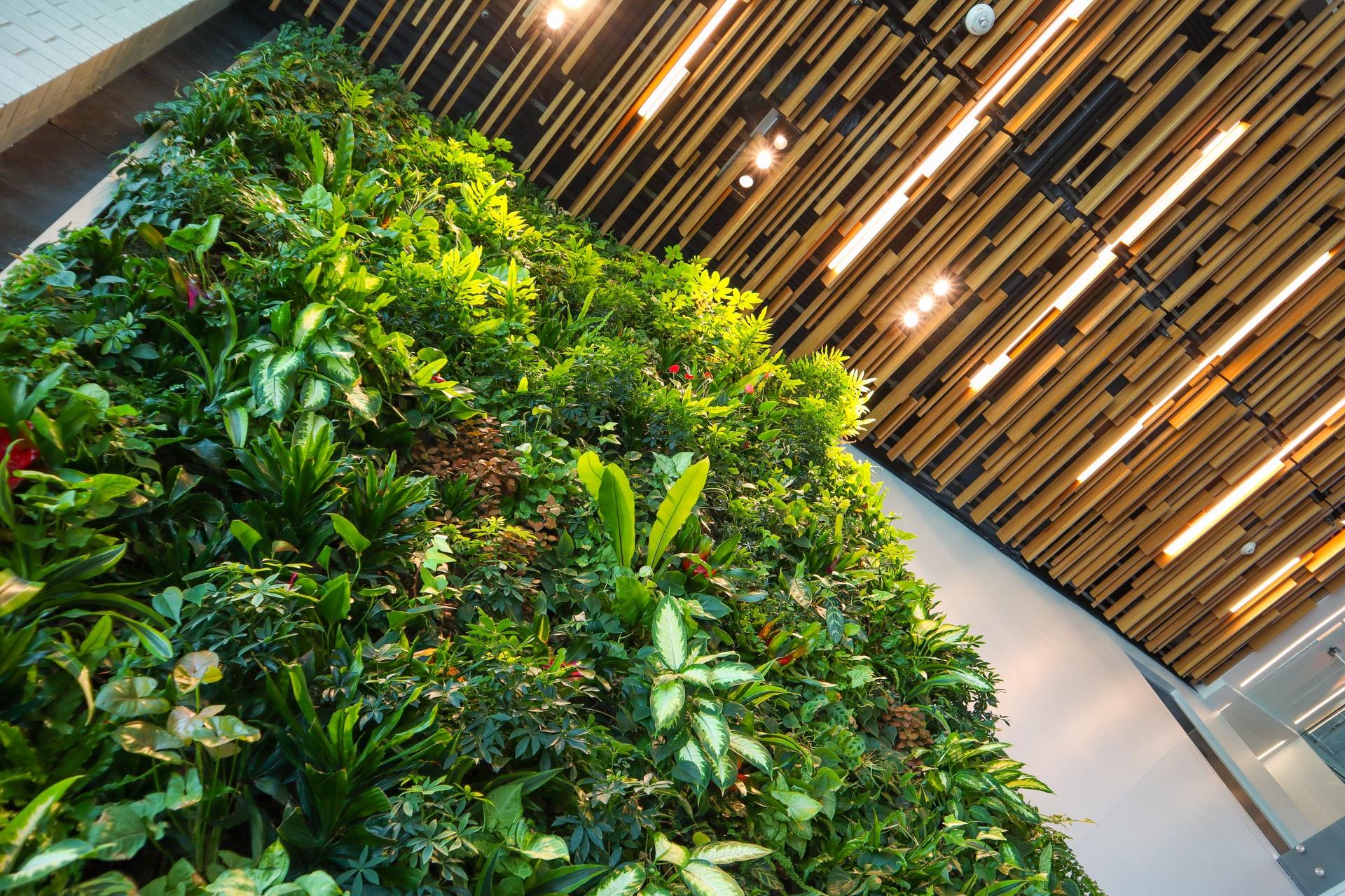 plantenwand akoestiek kantoorruimte kantoor